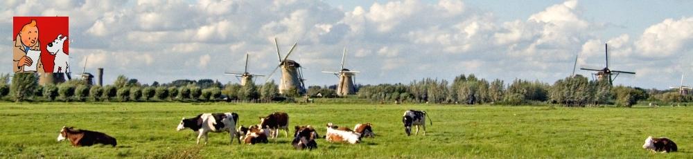 Kuifje in Polderije