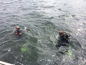 Een duik in de Grevelingen